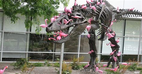 T-Rex Attacked By Flamingos On Google Campus - Earthly Mission